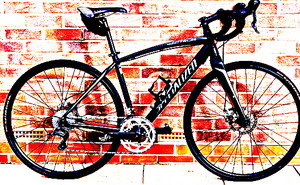 FREE bike sport for Sale in Highland Park, IL