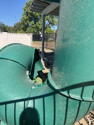Gorilla brand playground slide for Sale in Phoenix, AZ