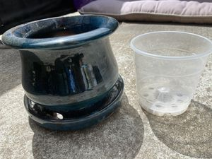 Plant Pot And Dirt for Sale in Salinas, CA