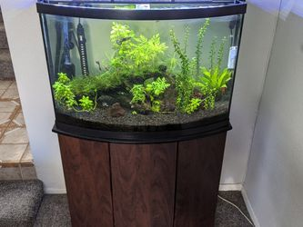 36gal Aquarium for Sale in Placentia,  CA