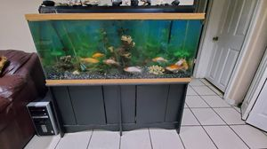 Fish tank for Sale in Westminster, CO