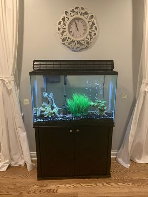 45 gallon Fish tank with stand and accessories for Sale in Affton, MO