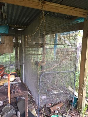 Big bird cage good condition for Sale in Dover, FL