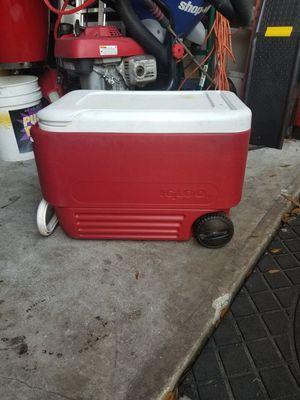 cooler for Sale in Seffner, FL