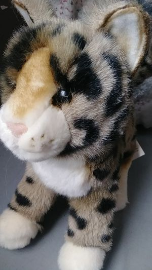 Tashette the Plush Bengal Cat by Douglas for Sale in Bakersfield, CA