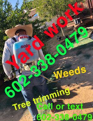 Landscape🌴🌳🌲🌲 for Sale in Goodyear, AZ