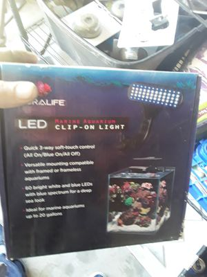Coral life clip on light for Sale in Lancaster, CA