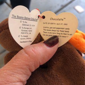 TY Beanie Baby Moose chocolate for Sale in Phoenix, AZ
