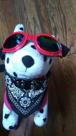 Dog/puppy adjustable bandana collar for Sale in Washington, DC