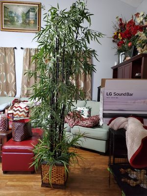 Artificial bamboo tree for Sale in Katy, TX