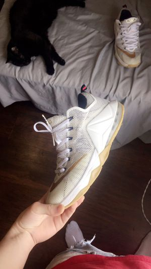 Nike lebron shoes size 10.5 for Sale in Woonsocket, RI