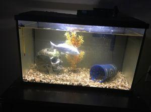 Fish tank and or fish for Sale in Murfreesboro, TN