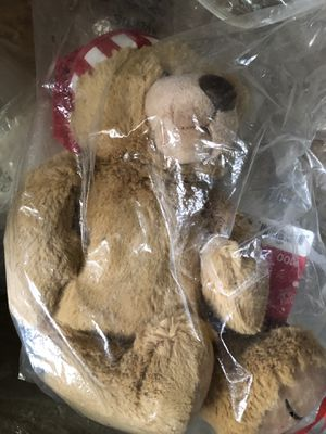 Teddy Bear from Amazon for Sale in Nashville, TN