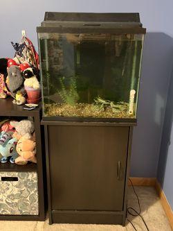 15 Gallon Aquarium, Stand, Light And Filter for Sale in Aurora,  IL