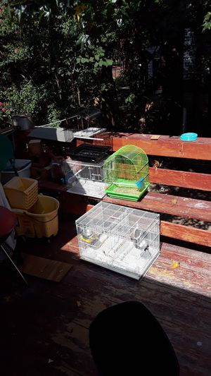 bird cage for Sale in Duluth, GA