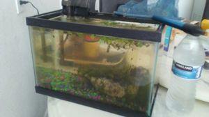 Small aquarium with filter for Sale in Pomona, CA