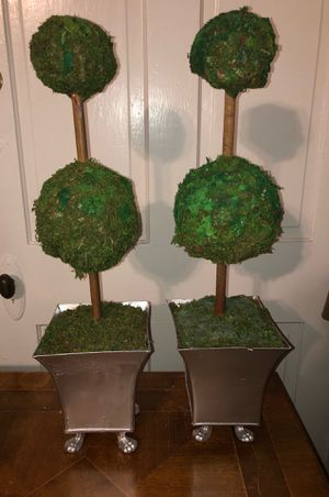 Topiary in silver metal pots for Sale in Louisville, KY