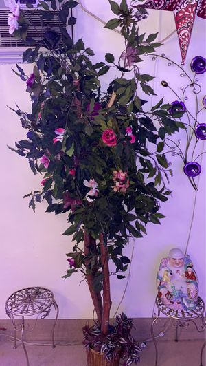 House plant for Sale in Rosemead, CA