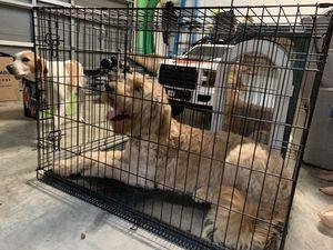 Dog crate XL for Sale in Gulf Breeze, FL