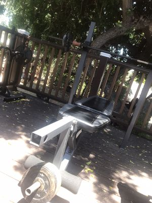 All the weights and the bench press and the curling bar is also included it has over 200 pounds weights for Sale in Spring Valley, CA