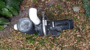 2 hp pool pump for Sale in Land O Lakes, FL