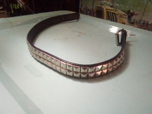 Dog collar 19_26 in for Sale in Clarkdale, AZ