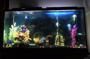 Fish Tank 🐠🐟🐳 $1.000 or best offer for Sale in Nashville, TN