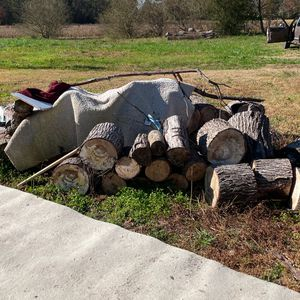 Free Firewood for Sale in Suffolk, VA