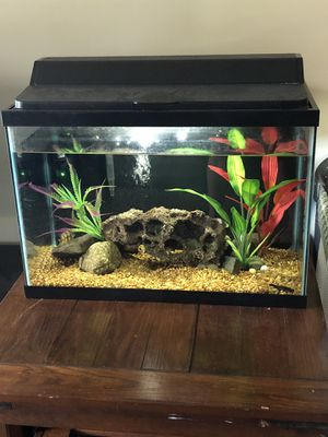 Complete 30 gallon fish tank for Sale in Chesapeake, VA