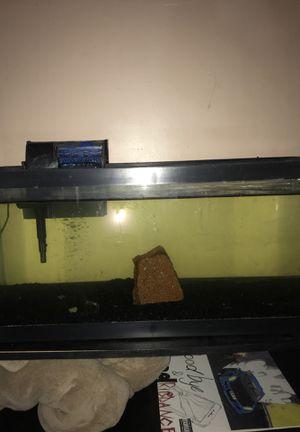 20 gallon fish tank for Sale in Vista, CA