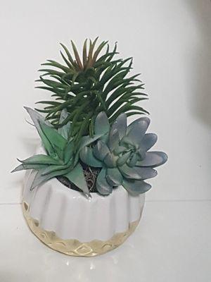 Artificial Succulents NEW!!! for Sale in Wimauma, FL