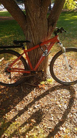 Custom pro mountain bike for Sale in Arvada, CO