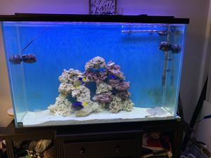 80 Gallon Tall Aquarium with Canister Filter/No Stand for Sale in El Cajon, CA