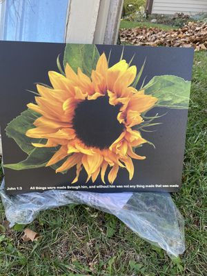 Sunflower Canvas print $15 for Sale in Columbus, OH