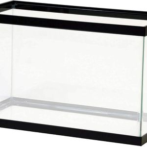 6 Fish Tanks Available for Sale in San Francisco, CA