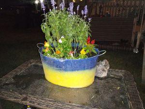 Flower pot for Sale in Las Vegas, NV