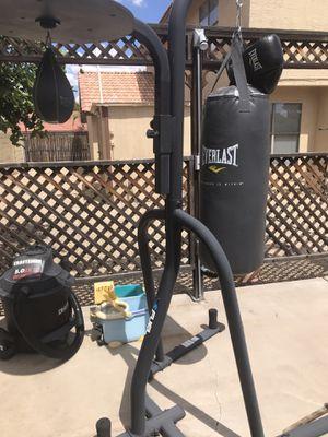 Everlast Heavy Bag / Speed bag setup for Sale in Phoenix, AZ
