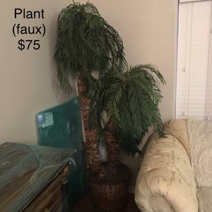 Indoor Palm tree plant with pot for Sale in Richmond, TX