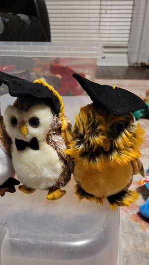 Beanie Baby Graduation Owls for Sale in Denton, TX