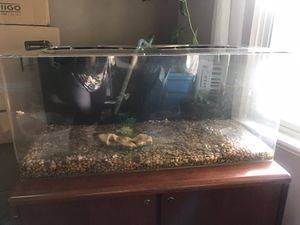 39 gal Acrylic Aquarium, with awesome canister filter and inline heater for Sale in Beaverton, OR