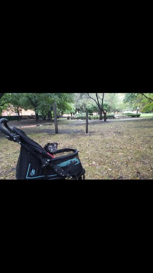 Dog stroller for Sale in Naperville, IL