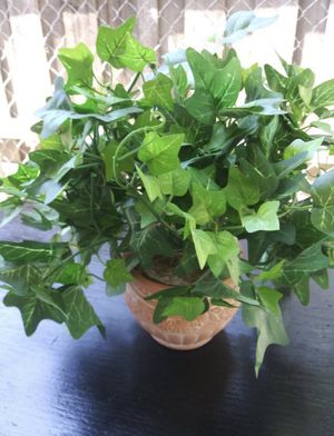 Artificial plant with clay pot $20 firm for Sale in Mesquite, TX