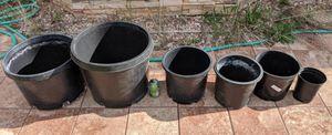 Plant pots plastic black please READ grow cultivation for Sale in Boulder, CO