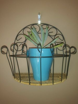 Small pot plant wall holder for Sale in Indian Trail, NC