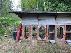 Chicken houses for Sale in Graham, WA