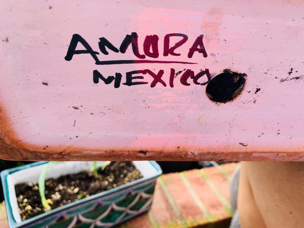 Mexican hand painted planters cold and snow resistant
