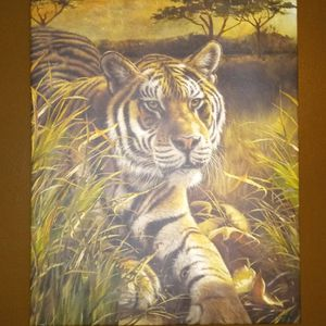 Tiger Art for Sale in Waterbury, CT