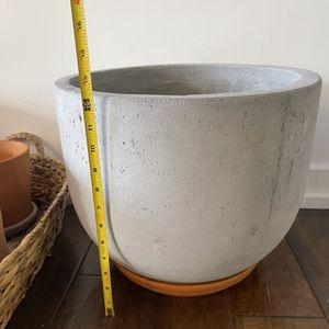 Terra-cotta Cement clay ceramic Pot Planter <3 Plants ! for Sale in Los Angeles, CA