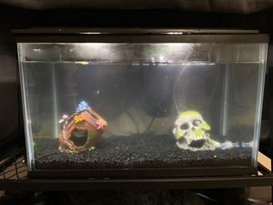 10 gallon fish tank for Sale in Everett, WA