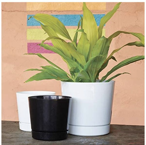 "2 BRAND NEW 10"" Flower/Plant pots"
